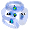 17 atom LAMs